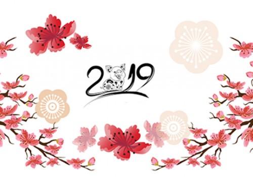 anh-bia-facebook-chuc-tet-2019-ky-hoi-17